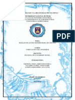 TRABAJO DE ACCESS OFICIAL.docx