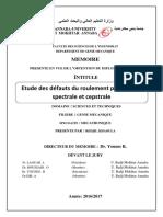 REDJIL-KHAOULA.pdf