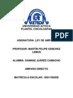AMPARO DIRECTO.docx