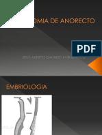 Anatomia de Anorecto