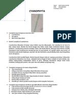 Resume Cyanophyta