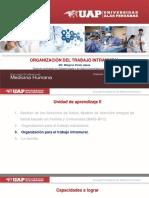 8.Organizacion Del Trabajo Intramural-uap