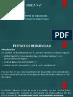 Guía_Perfilaje_Unidad VI
