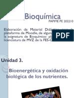 Bioenergética - Presentación