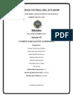 informe 2 - cuerpos parcialmente sumergidos.docx