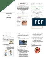 Leaflet DBD Dr.renny