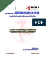 Manual Practicas MicroPIC_887