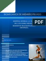 biomecanicademiembropelvico-141003154057-phpapp01