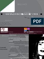 DP1C Media Kit Updated for 2010-2011