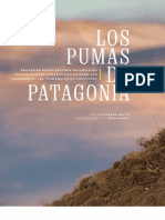 Pumas de Patagonia (National Geographic)