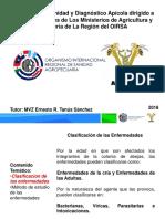 1 Manual de Patologia -Abejas OIRSA Mexico (1)