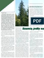 szumia-jodly