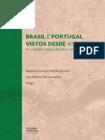 Brasil_e_Portugal_vistos_desde_as_cidades_-_e-PDF_HRes.pdf
