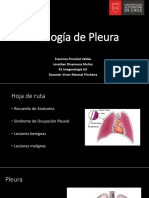Seminario 21 Pleura .pptx