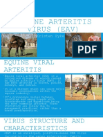 Equine Viral Arteritis.pptx