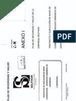 PSS Anexo I.pdf