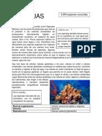 Monografía ORIGINAL.docx