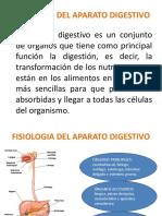 Fisiologia Del Aparato Digestivo Vic (1)