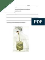 biologia sistema digestivo.docx