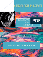 1anatomía y Fisiología Placenta
