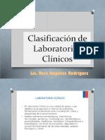 Clasificacion de Lab Clinico