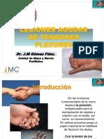 09_Les_flexores_es.pdf