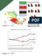 Precios Gasolina 2019 - PROFECO y SE