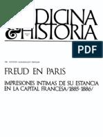 Albarracin Teulon Agustin - Freud en Paris