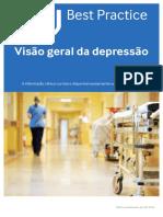 Visão Geral Da Depressão