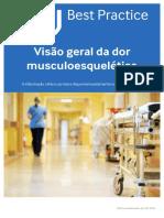 Visão Geral Da Dor Musculoesquelética