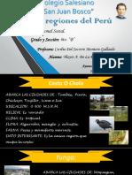 Expo. 8 Regiones Del Perú