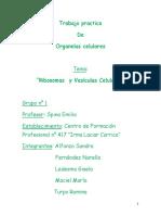 Tp Biologia Humana Ribosomas y Vesiculas Celulares Grupo N_1