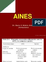 6.AINES