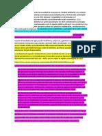 EVOLUCIÓN HISTORICA DEL EIA.docx