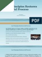 Los Principios Rectores del Proceso.pptx