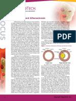LAB Inflammation Focus