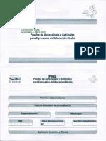 PAES.pdf