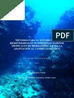 Metodologia_para_la_cuantificacion_de_ca.pdf