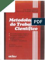 LIVRO_METODOLOGIA DO TRABALHO CIENTÍFICO.pdf