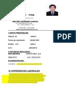 CURRICULO-VI.doc