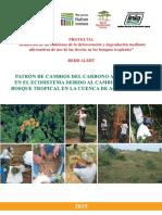 Cuellar-Patron_de_cambios_del_carbono.pdf