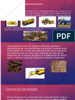 Biomasa UMSA