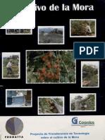 Cultivo de la mora.pdf