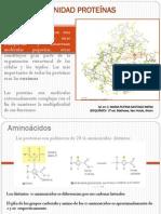 III. Unidad Proteinas