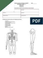 hip lower limb assignment