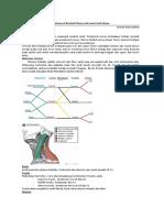 anatomy brachial plexus and lower limb .docx