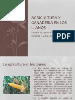 Agricultura y Ganadería en Los Llanos