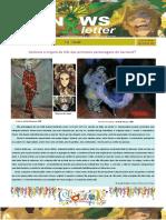 Newsletter Fevereiro 2019 Final