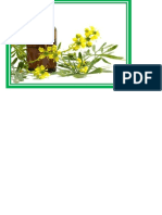 Ficha de Planificacion