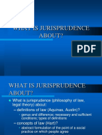 What is Jurisprudence About